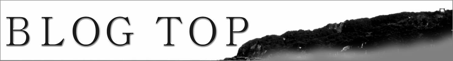 BLOG TOP.jpg